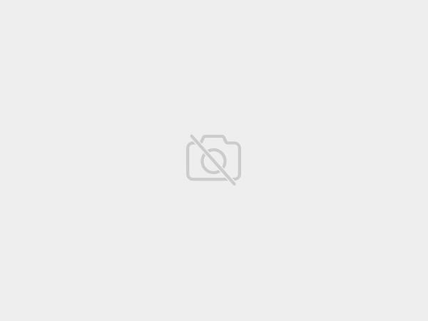 HS Ostnatý obojek mini, skarabinou (jeden kroužek)