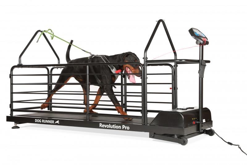 Dog Runner Revolution Pro